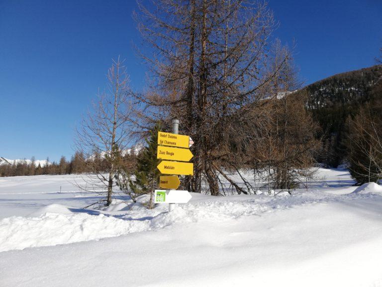 Wegweiser in der Schneelandschaft. Hinten eine Föhre ohne Nadeln. Im Hintergrund ein Hügelzug und Tannenwald. Vorne Schnee.