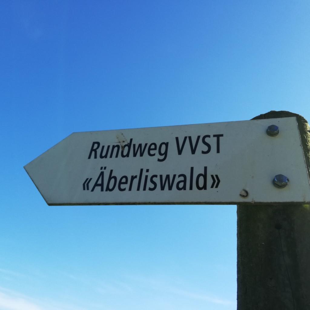 Ein Wegweiser mit blauem Himmel. Es steht: Rundweg VVST und Äberliswald. Das ist im Sternberg Zürich.