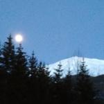 Vollmond hinter Tannen, Dämmerung in den Bergen, blauer Himmel, weisse Berge.
